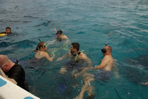 SQLCruise Snorkelers